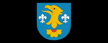 powiat_wodzisławski